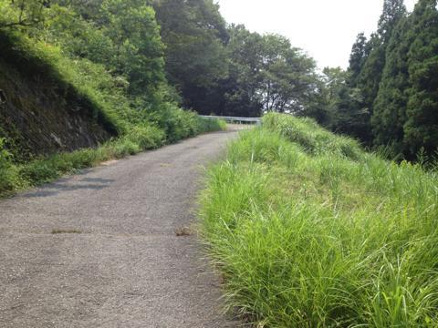yoshikawa_06.jpg