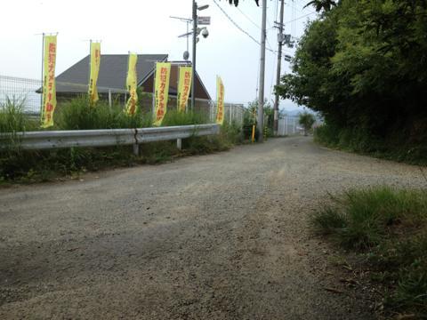 yoshikawa_14.jpg
