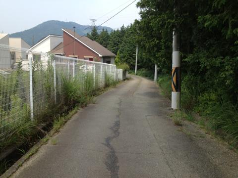 yoshikawa_19.jpg