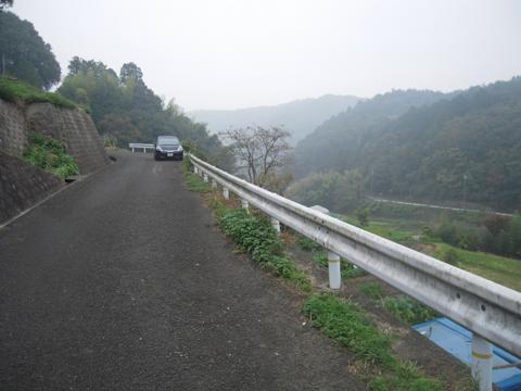 zenitana_12.jpg
