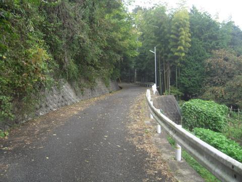 zenitana_13.jpg