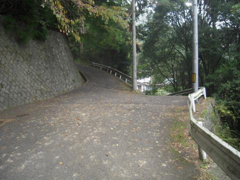 zenitana_15.jpg