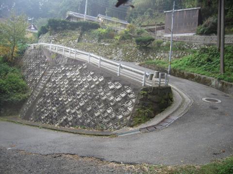 zenitana_19.jpg