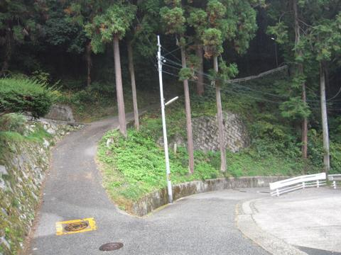 zenitana_22.jpg