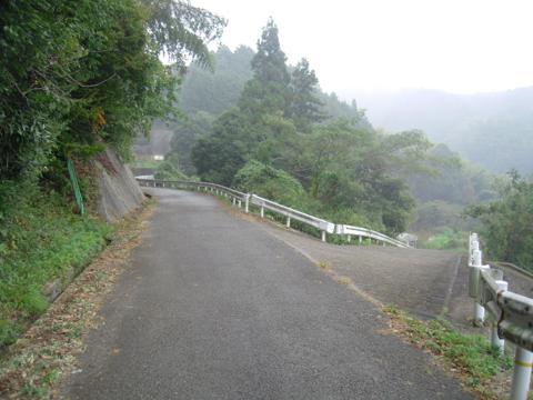zenitana_32.jpg