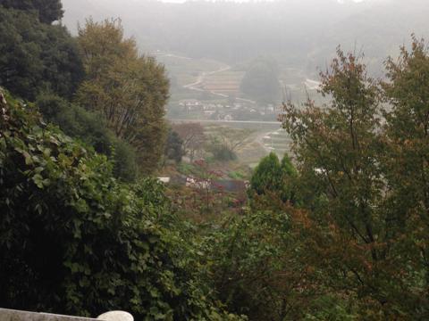 zenitana_34.jpg