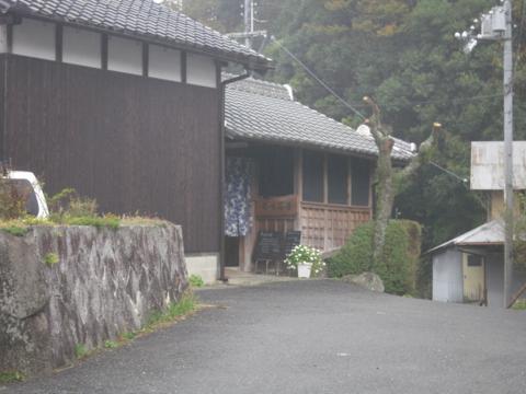 zenitana_42.jpg