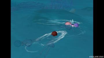 チムメンと泳いだり