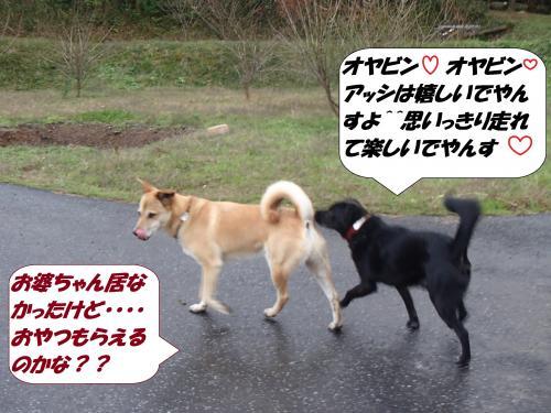 PC050023_convert_20141206125300.jpg