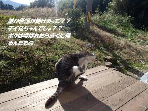 PC100107_convert_20141212101136.jpg