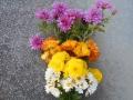 20131117 仏花