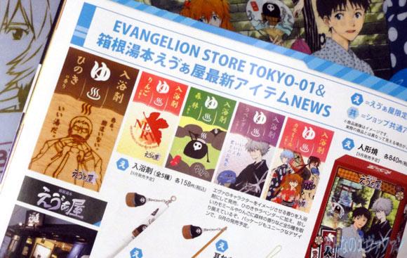 eva_2013_9_a_04.jpg