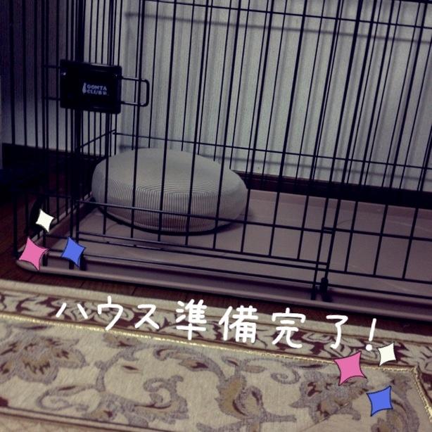fc2blog_2013110701000136c.jpg