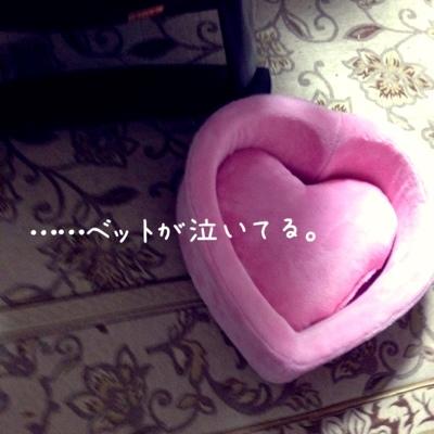 fc2blog_20131108120324e9c.jpg
