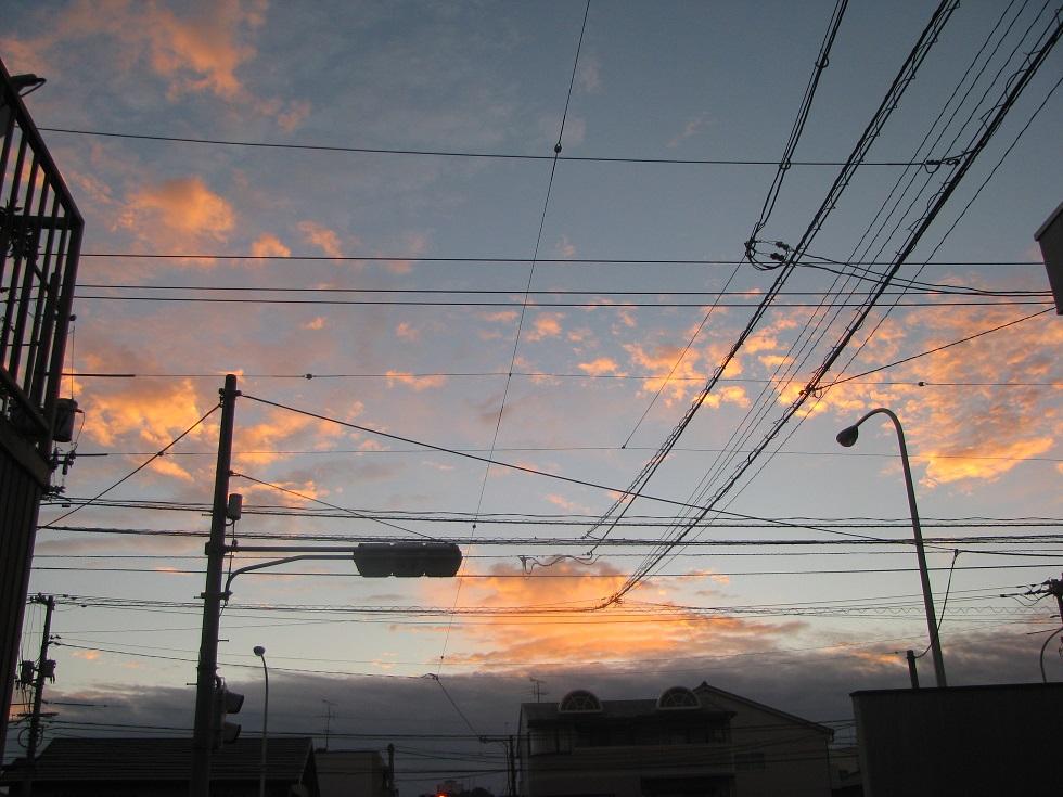 IMG_7970 asayake