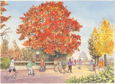駒沢公園 紅葉
