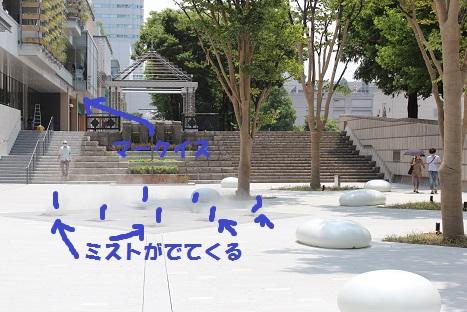 IMG_0016ac.jpg
