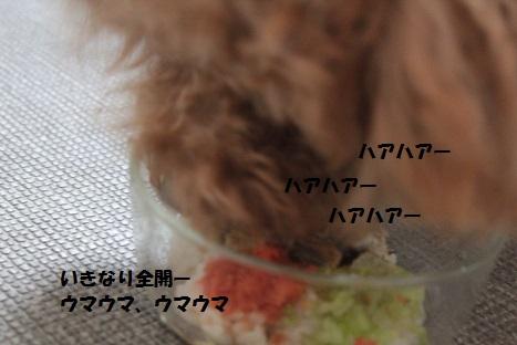 IMG_0128ac.jpg