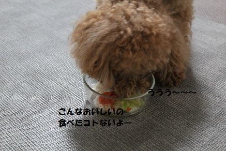 IMG_0129ac.jpg