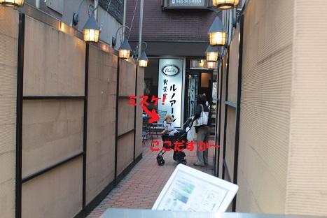 IMG_1304ac.jpg