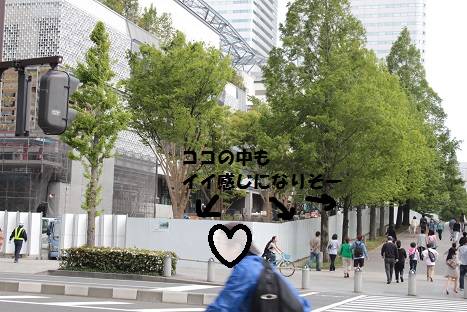 IMG_9647ac.jpg