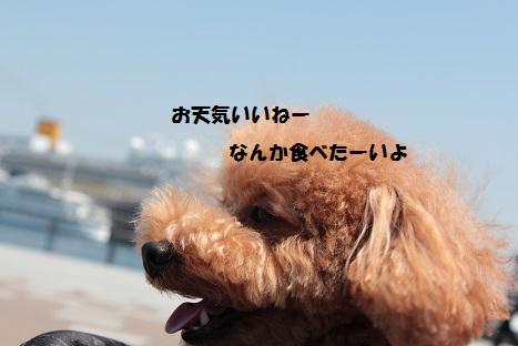 IMG_9813ac.jpg