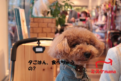 IMG_9863ac.jpg