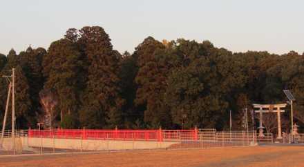 つの 7 都農神社