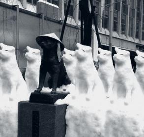 ハチ公 雪 銅像