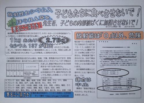 20130906 ほうれん草1