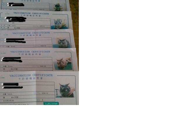 snap_noruran_20137093842.jpg