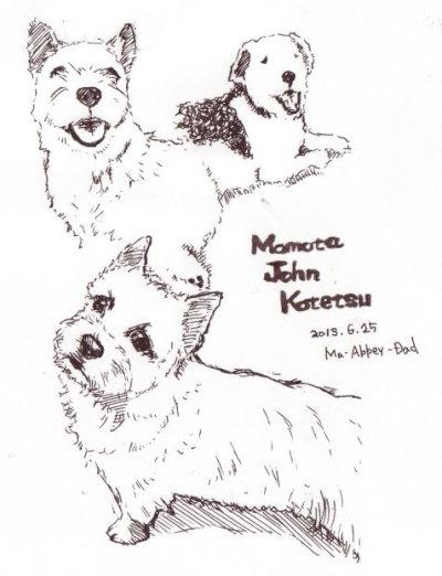 momota[1]