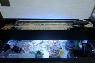 60cmサブ水槽上部フィルター2_20141029