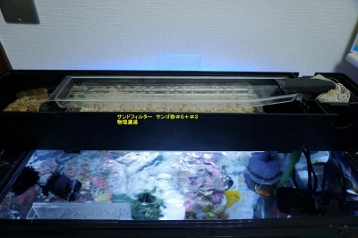 60cmサブ水槽上部フィルター構成1_20141029