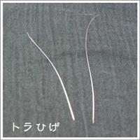 20130913-01