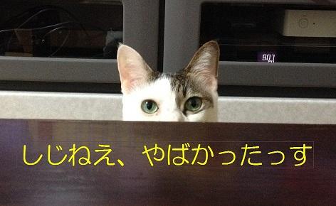 11_20131011202341b12.jpg