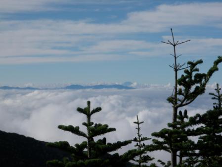 130803浅間外輪山 (21)s