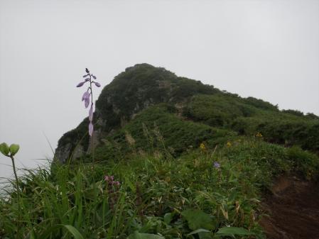 130824秋田駒~乳頭山 (58)s