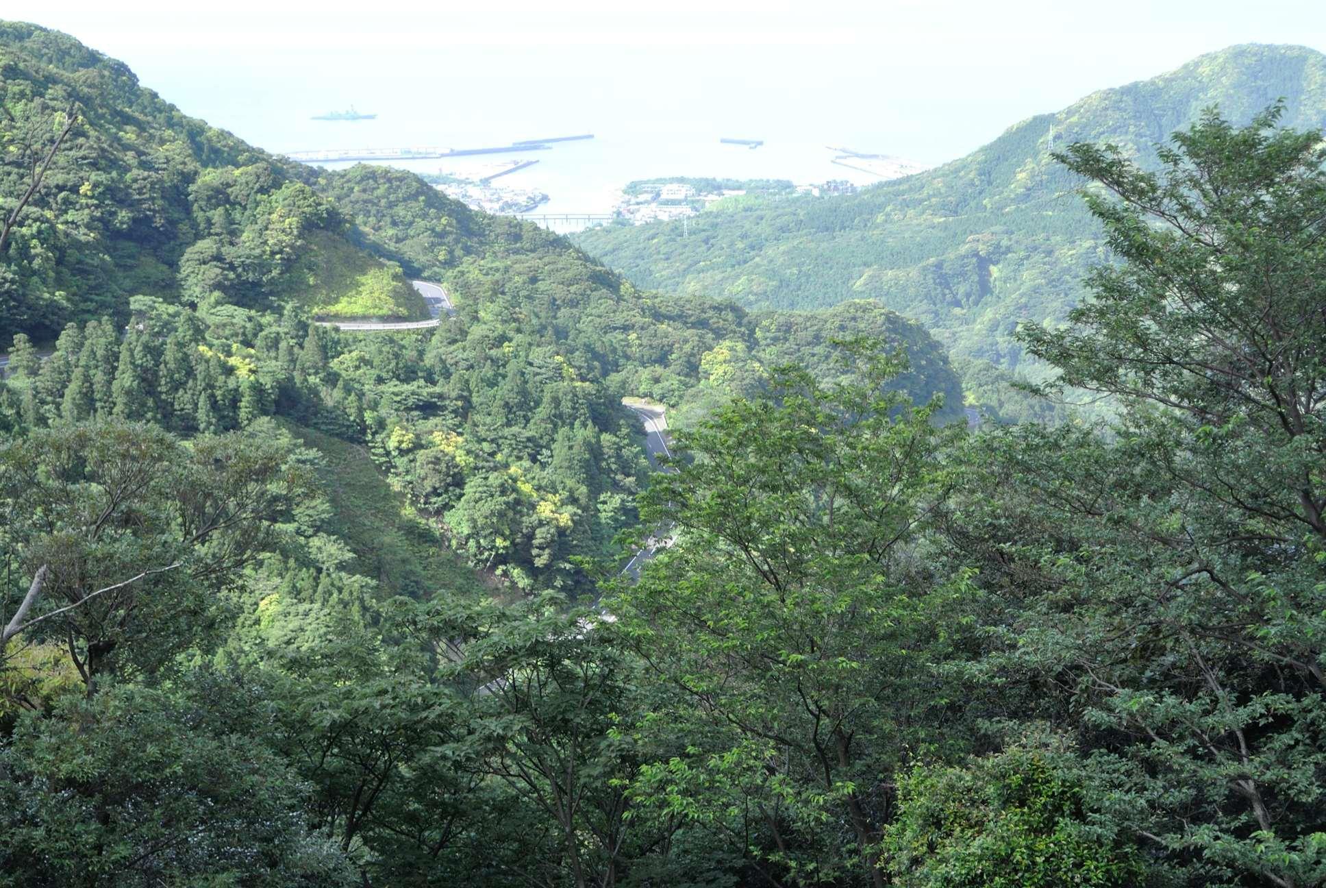 白谷雲水峡へ至る道