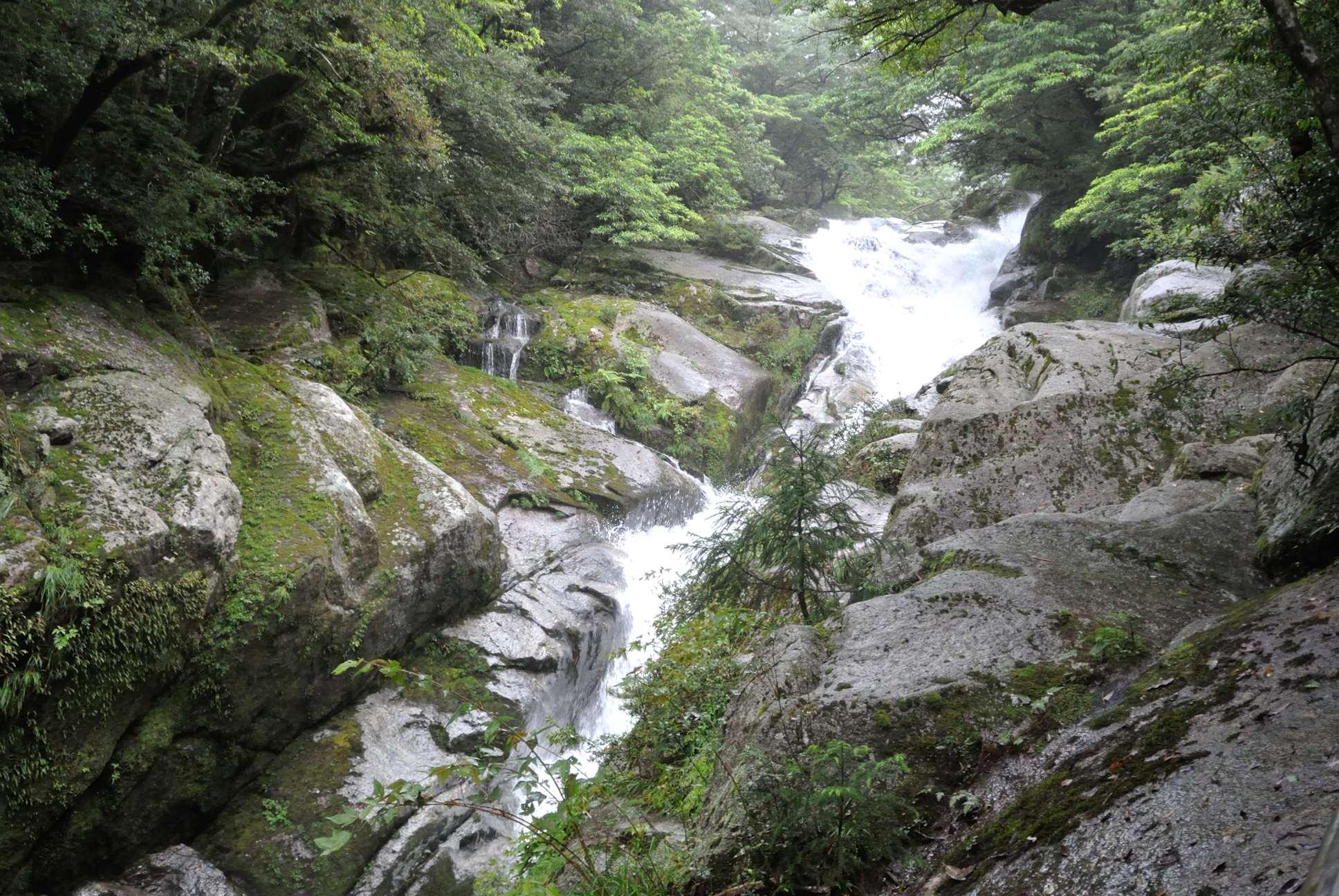 白谷雲水峡1