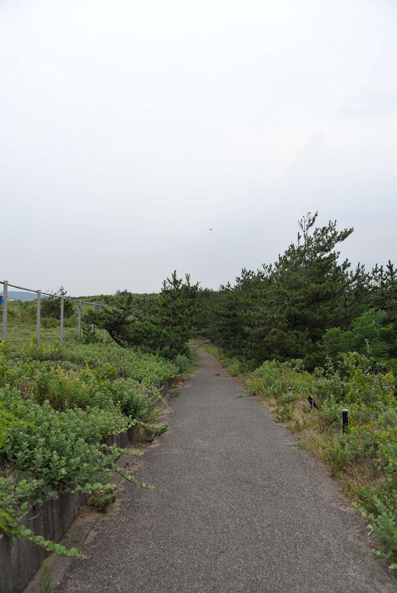 石川のサイクリングロード