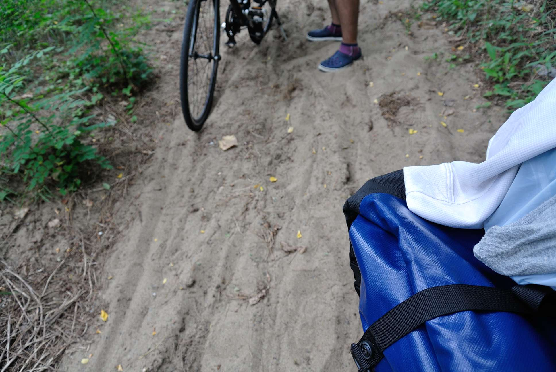 石川のサイクリングロードの実態