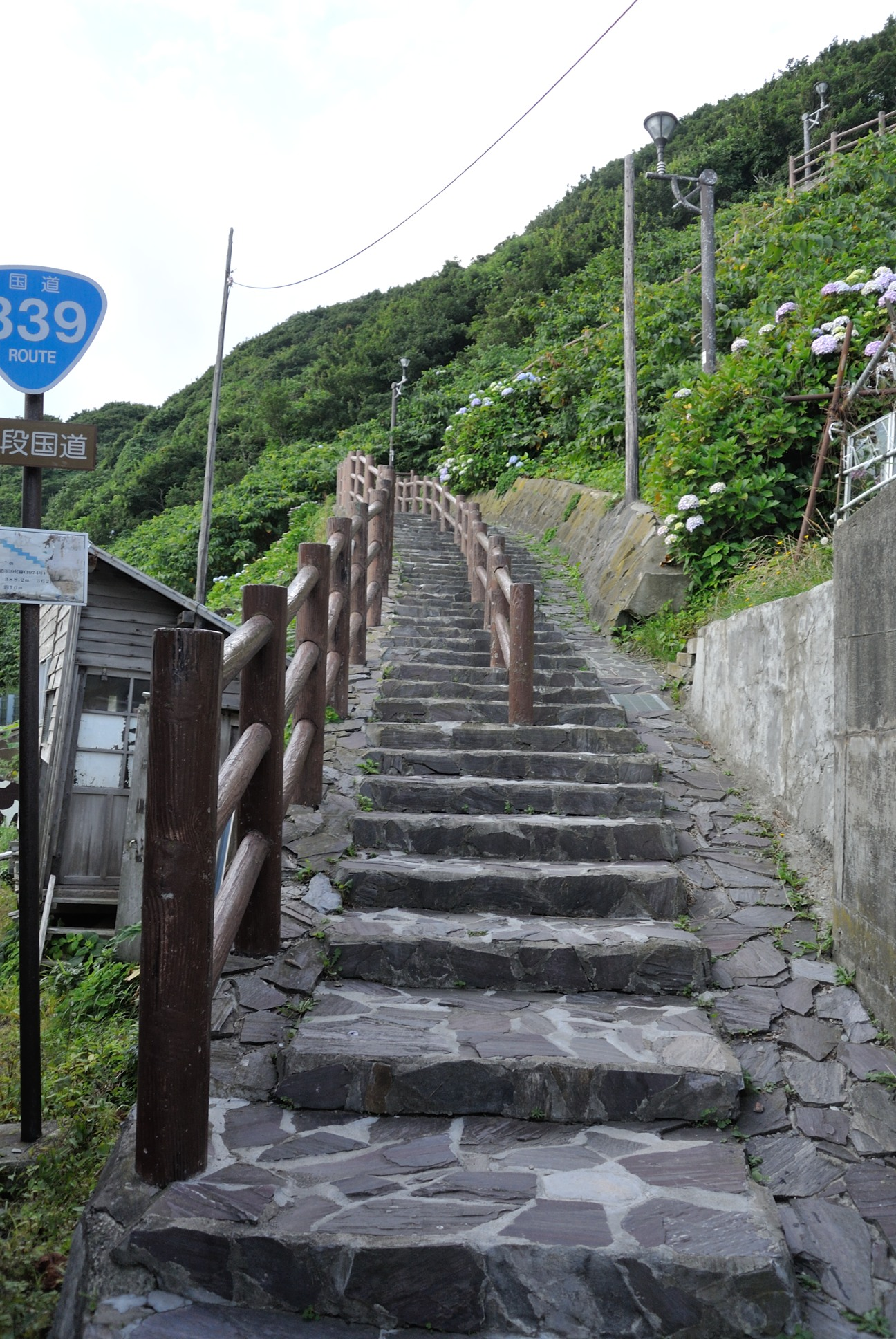 階段国道の下側