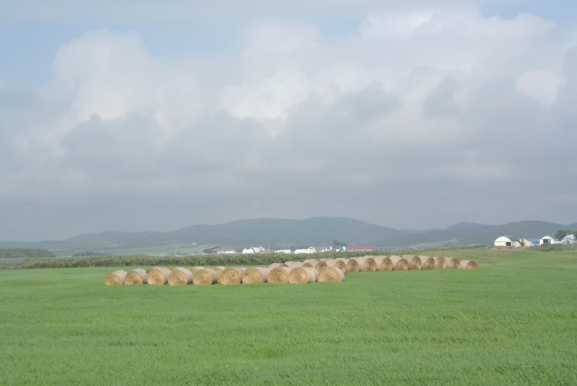 牧草ローーール