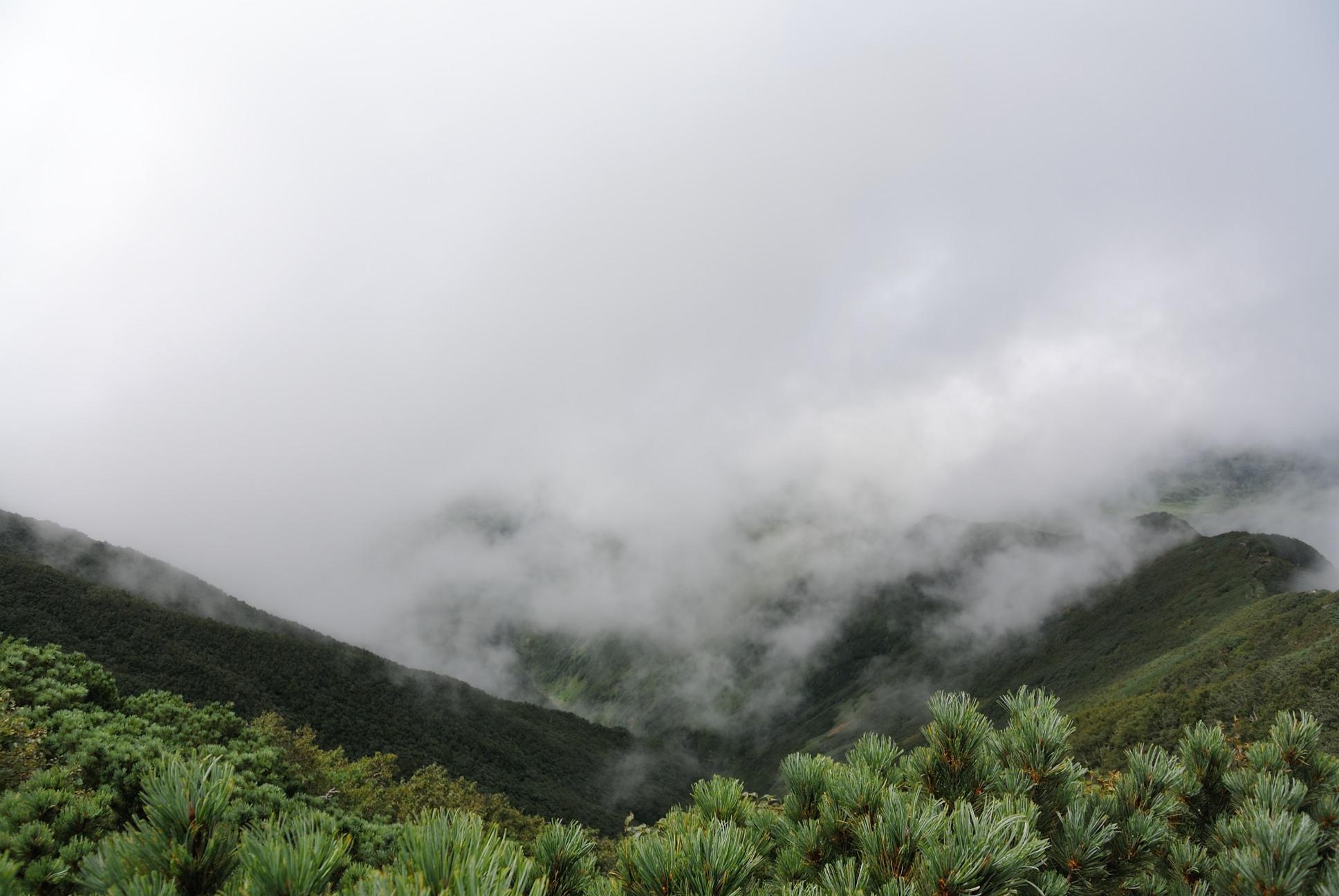 利尻山俺より下に雲が見えるぜ