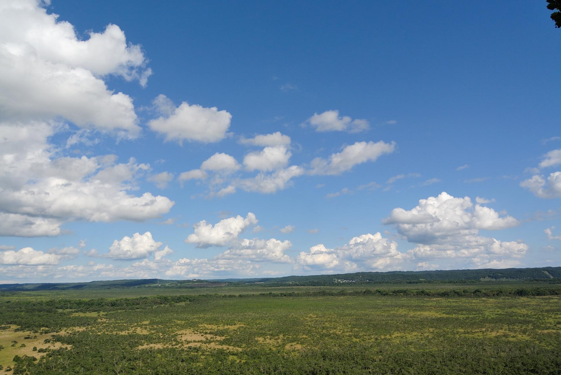 これが釧路湿原か2