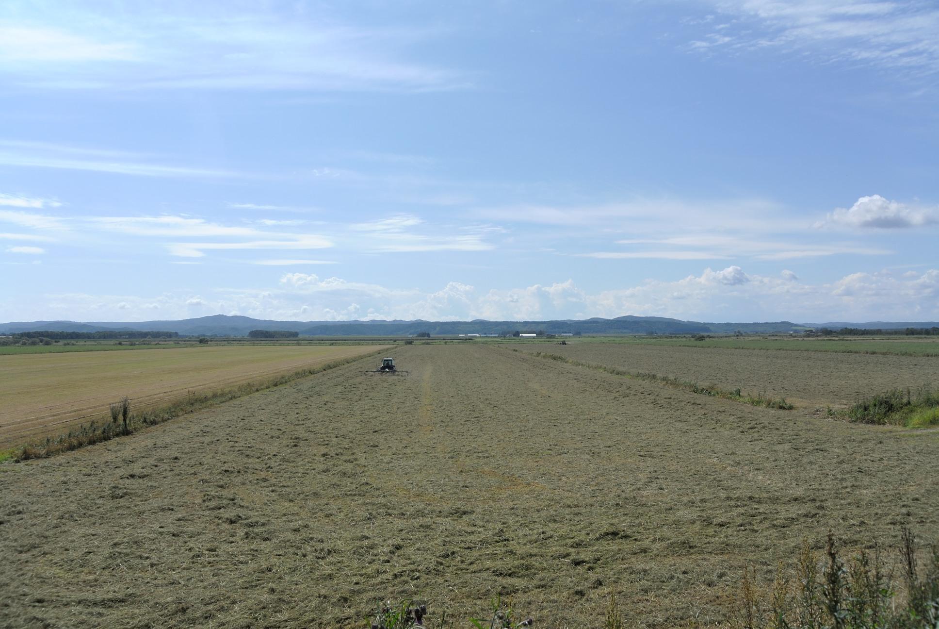 やっぱり日本じゃねえよこの農業風景