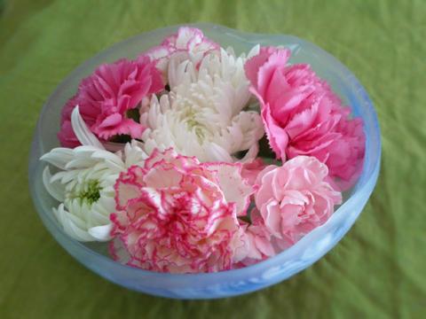 今日の花1