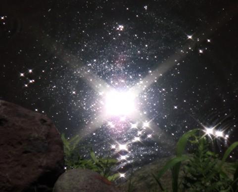 space63454.jpg