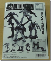 assaultkingdom2-1